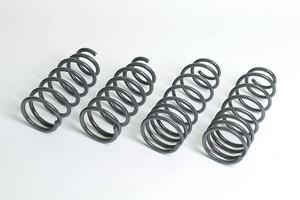 Progress Technology MX5 Springs.